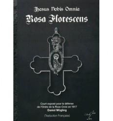 Rosa Florescens